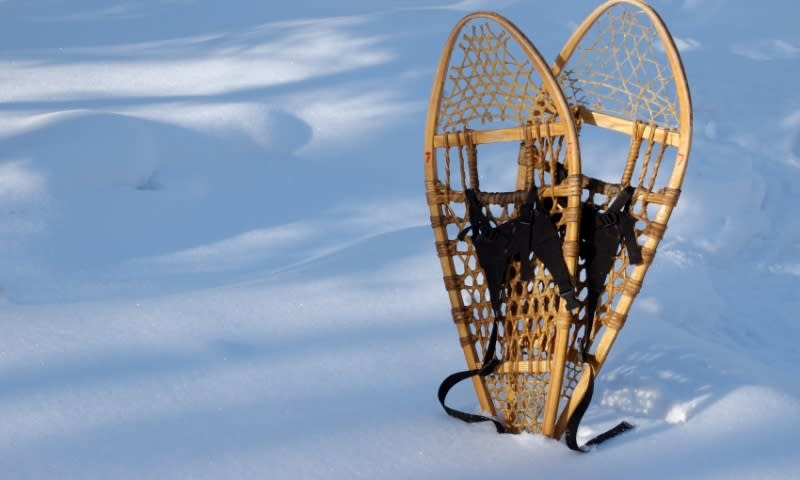 Pair of snowshoes propped up in fresh snow