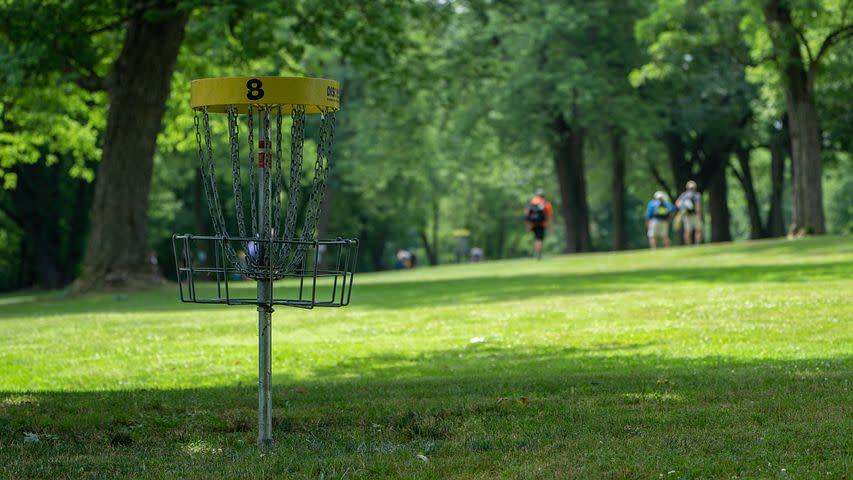 Disc Golf & Friends