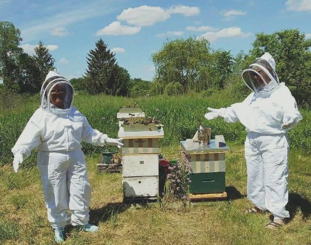 Beekeepers tending to their bees