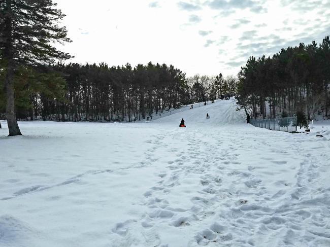 People Sledding On Hill