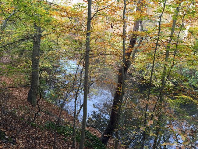 Occoneechee MTN Trail