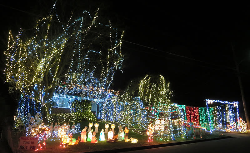 The Ruth Home, Christmas Lights in Fairfax County