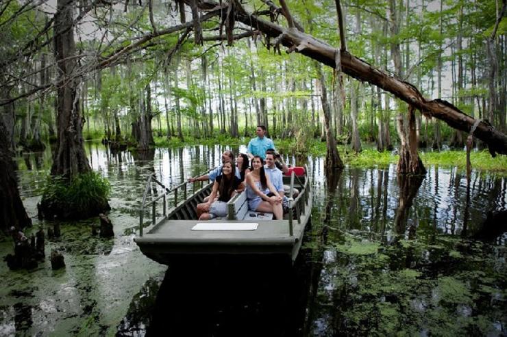 Bayou Swamp Tour