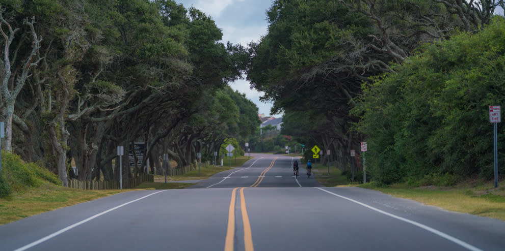 Middle of the road view of a two lane street lined by trees in Kure Beach