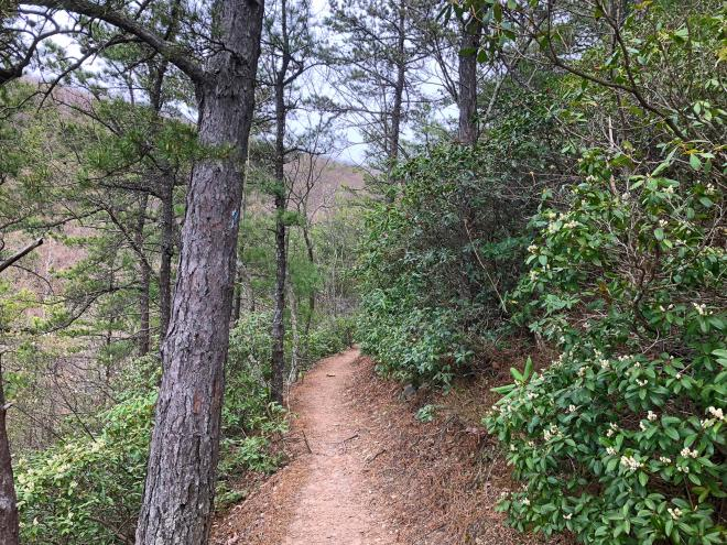 Poor Mountain Trail - Roanoke, Virginia