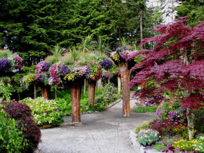 Guided Botanical Tours