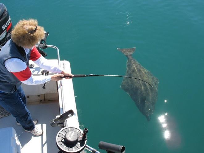 Fishing Glacier Bay