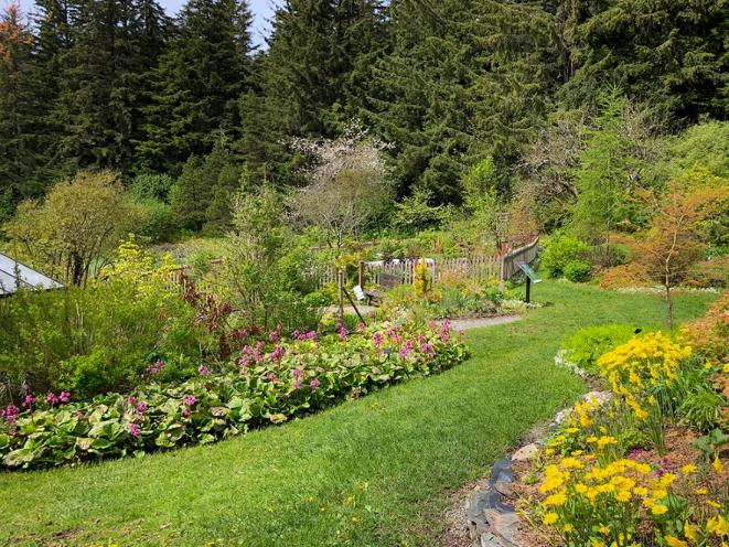 Jensen-Olson Arboretum 3