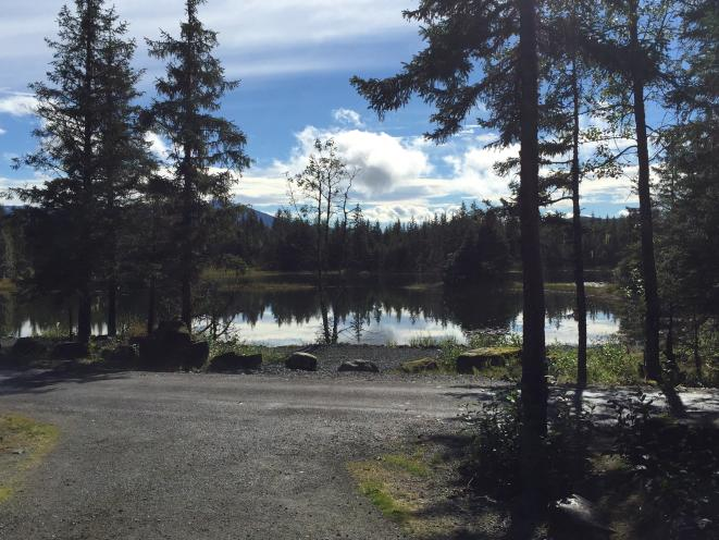 Mendenhall Campground Site #17