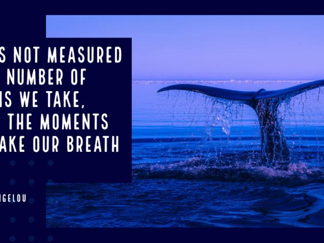 Moments that take our breath away