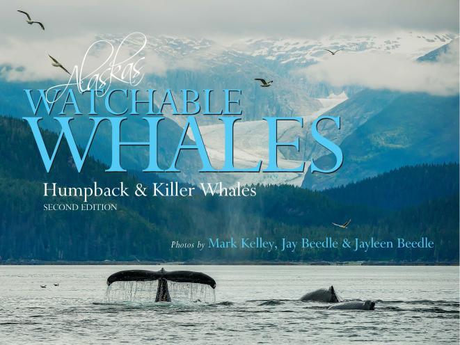 Alaska's Watchable Whales