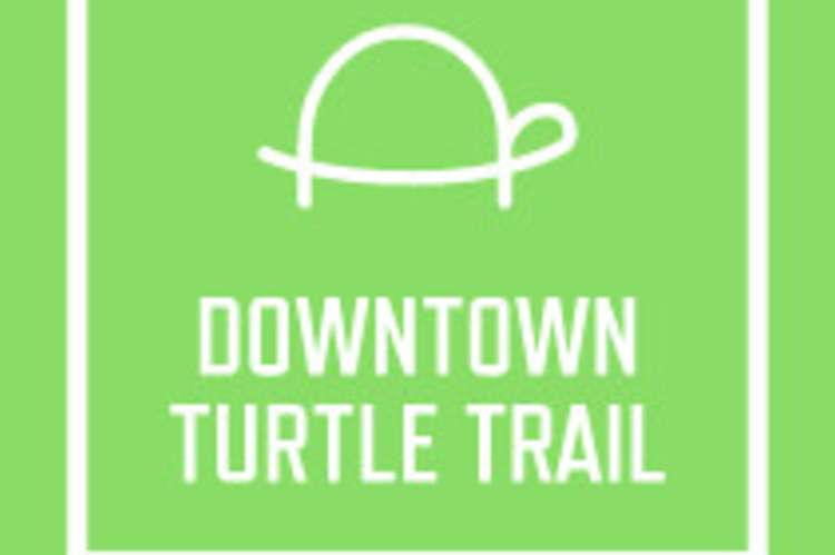 Downtown Turtle Trail of Decatur