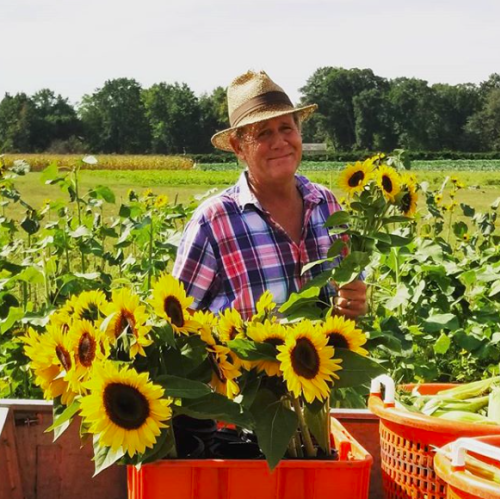 Man in a field of sunflowers holding a bouquet of sunflowers