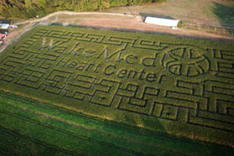 WakeMed Corn Maze