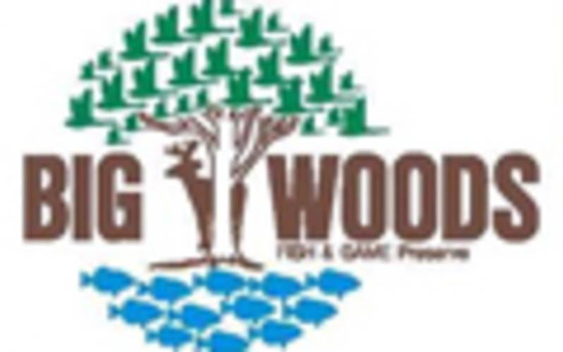 Big Woods Fish & Game