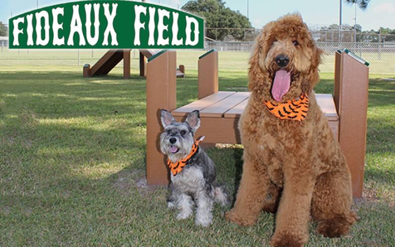 Fideaux Field