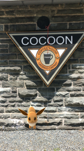 Pokémon GO in the Pocono Mountains