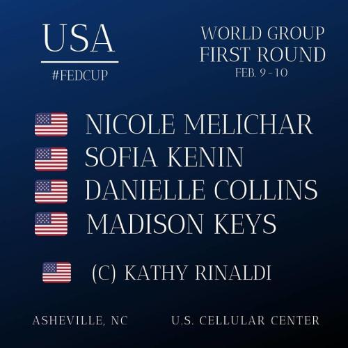 Fed Cup Graphic