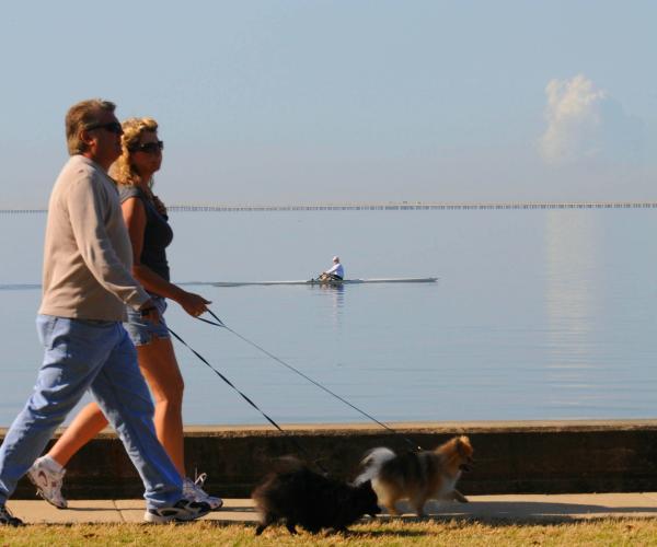 Couple Walking Lakefront