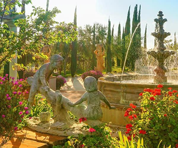 Garden at Mount Palomar