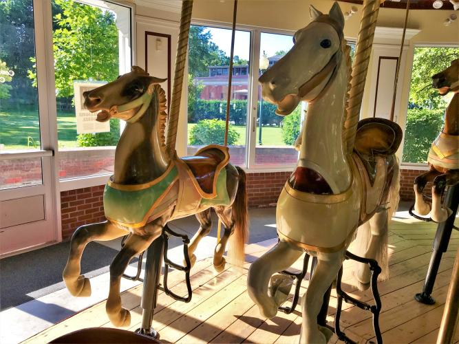 Two carousel horses side by side in the sunlight