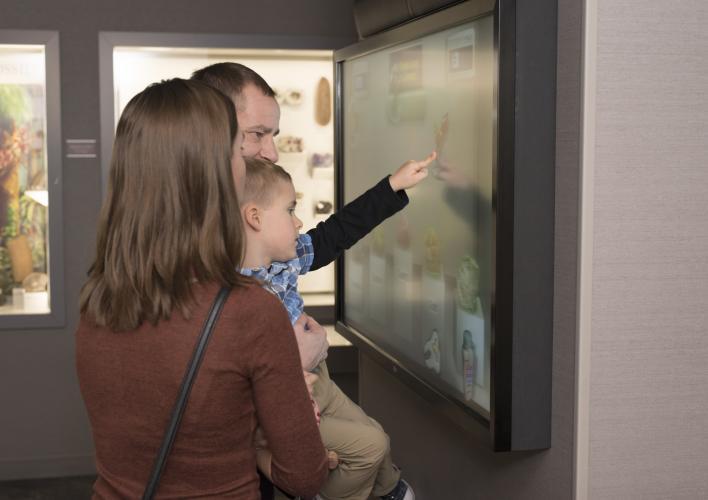 New Interactive Displays