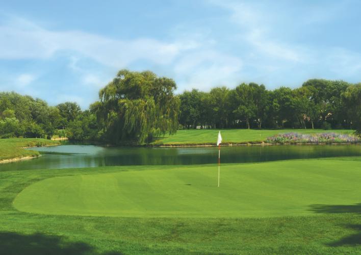 cover golf course photo.jpg