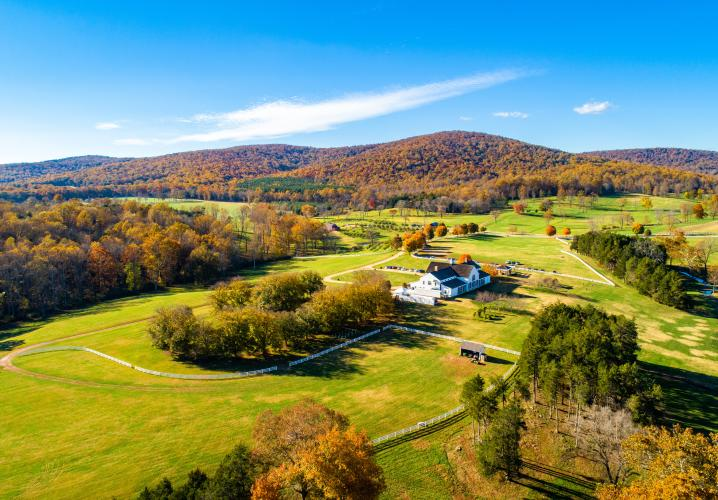Fall at Castle Hill Cider