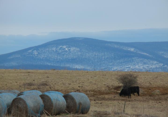 Mountains, farm land