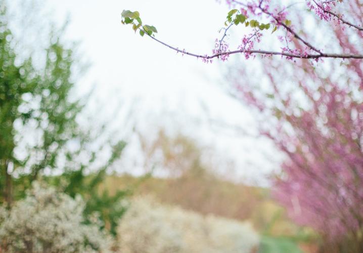 Grelen Spring