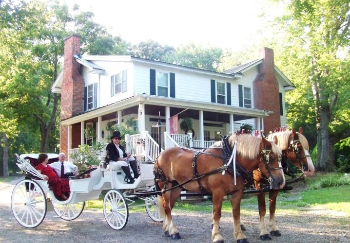 A horse and carriage ride