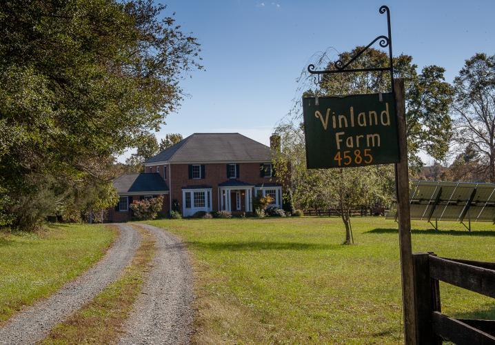 Vinland Farm