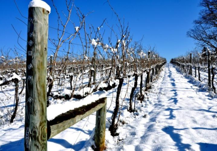 Keswick Snow