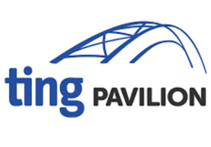 Ting Pavilion Logo