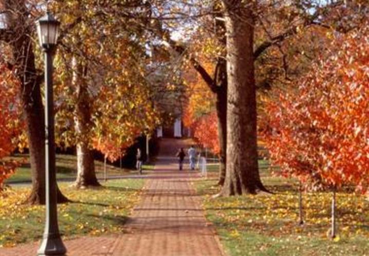 UVA Walkway