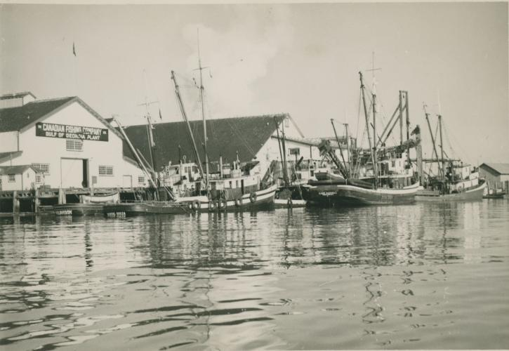 The Cannery in the 1970s - Photo: Gulf of Georgia Cannery