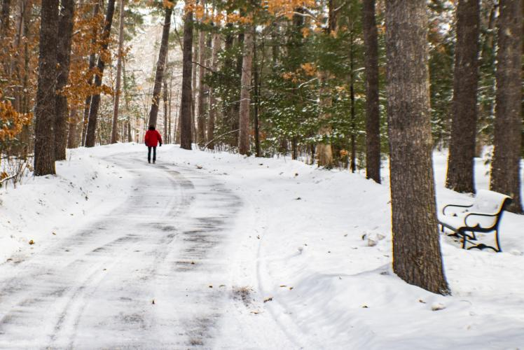 Carson Park in Winter