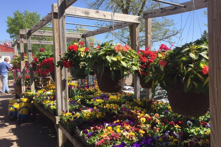 Klinger Farm Market: flowers