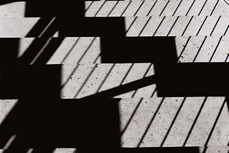 Flight of Descending Shadows