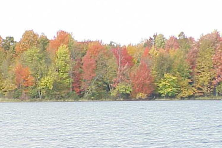 Birch Point Resort In Bloomer, Wisconsin