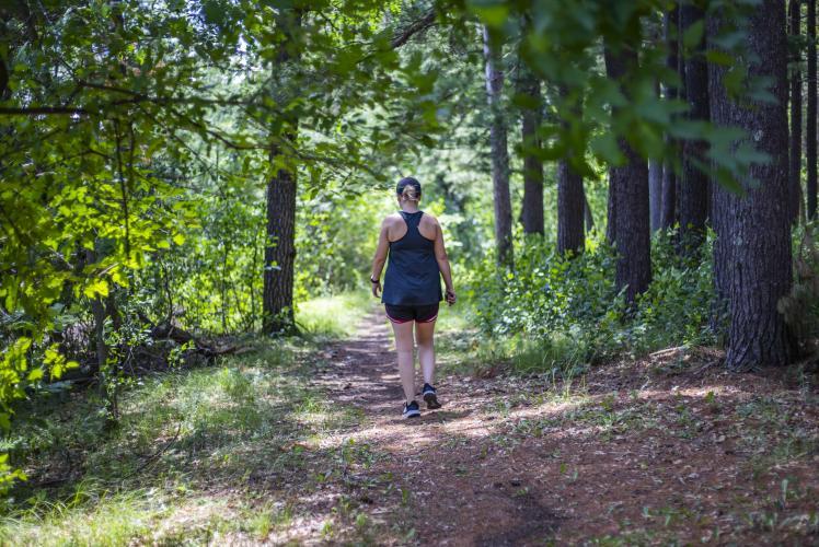 Carson Park hiking trail