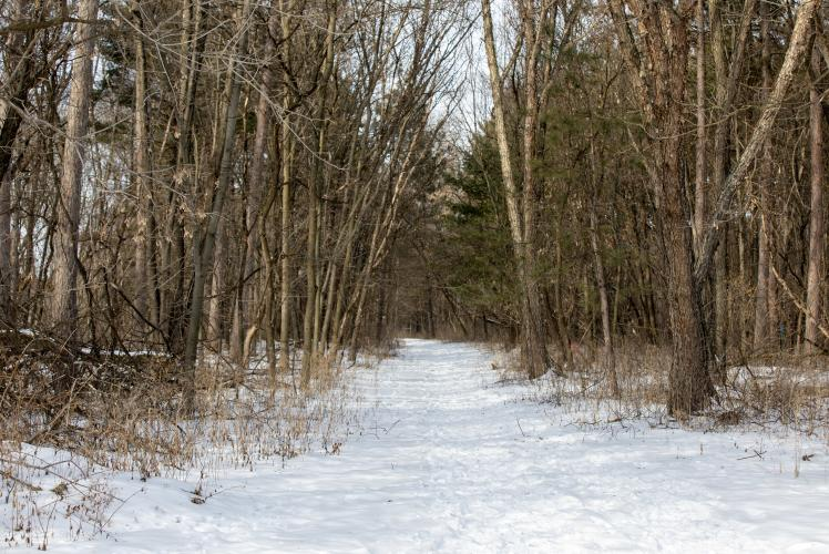 City Wells Area Trail in Eau Claire, WI