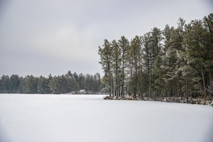 Coon Fork Lake County Park in Winter