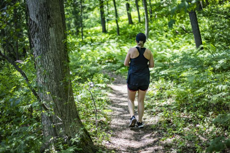 Domer Park Trail