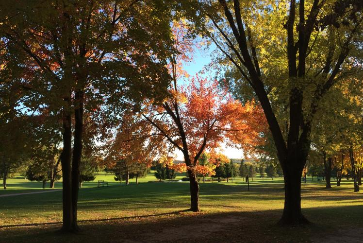 Princeton Valley Golf Course - Fall View