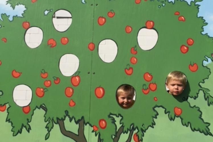 Bushel & a Peck Apple Orchard