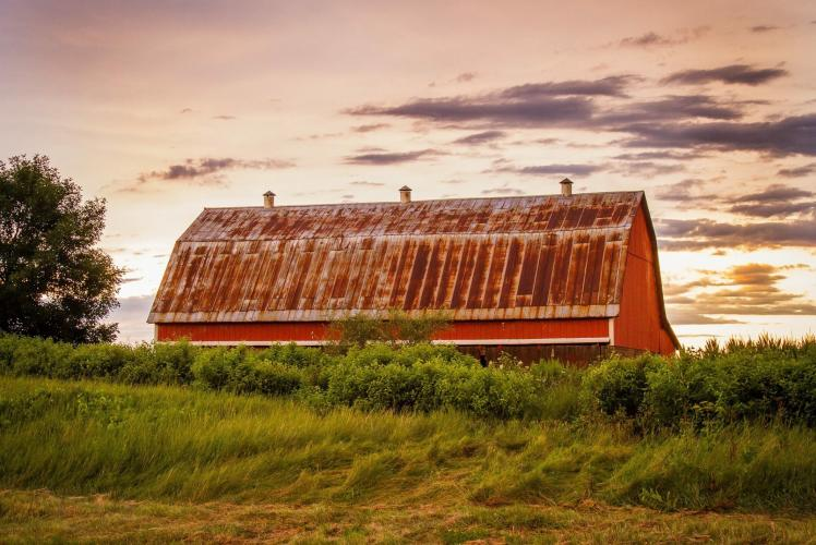 Brittany Lucille Photography - Rural Farm Scape