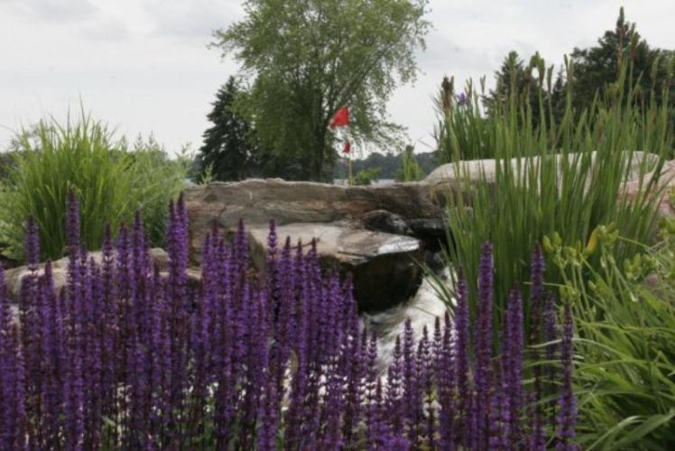 Lake Wissota Golf & Events hole