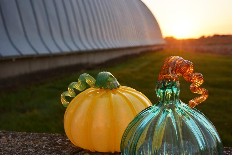 The Glass Orchard in Eau Claire, WI: Apple Orchard and Glass Studio (Glass Pumpkins)
