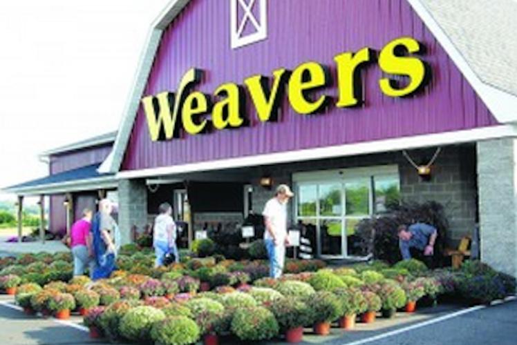 Weaver's